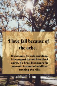 i-love-fall-because-of-the-ache